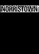 Norristown Comfort Colors Heavyweight Ring Spun Tee