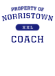 Norristown New Era Tri-Blend Pullover Hooded T-Shirt
