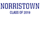 Norristown Ladies' Tri-Blend T-Shirt