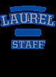 Laurel Ladies Ombre V-Neck Tee