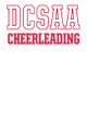 DCSAA Embroidered Youth V-Neck Windshirt