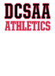 DCSAA Champion Reverse Weave Hooded Sweatshirt