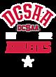 DCSAA Youth Heavyweight Sleeve Stripe Hooded Sweatshirt