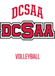 DCSAA Youth Momentum Performance Hoodie