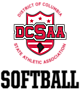 DCSAA Embroidered Ladies Attain 1/4 Zip Pullover