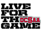 DCSAA Holloway Youth Blue Chip Hoodie
