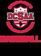 DCSAA Embroidered Snapback Flat Bill Trucker Cap
