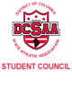 DCSAA Embroidered Holloway Pack Pullover