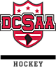 DCSAA Embroidered Russell Hybrid Pullover
