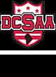DCSAA Prism Bold 1/4 Zip Pullover