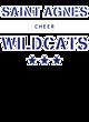 Saint Agnes Ladies Game Long Sleeve V-Neck Tee