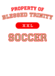 Blessed Trinity Ladies' Tri-Blend T-Shirt