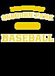 Osbourn Park Fan Favorite Heavyweight Hooded Unisex Sweatshirt