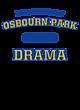 Osbourn Park Champion Heritage Jersey Tee