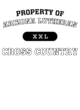 Arizona Lutheran Ladies Attain Wicking Performance Shirt