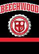 Beechwood Womens Cotton V-Neck T-shirt