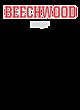 Beechwood Ladies' Tri-Blend T-Shirt