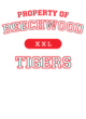 Beechwood Ladies Attain Wicking Performance Shirt