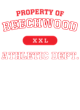 Beechwood Bella+Canvas Unisex Tri-Blend T-Shirt