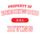 Beechwood Tri-Blend Ladies Long Sleeve Hooded T-shirt
