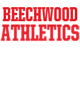 Beechwood Womens Holloway Heather Electrify Perform Shirt