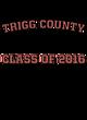 Trigg County Champion Heritage Jersey Tee
