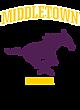 Middletown Adult Tri-Blend T-Shirt