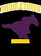 Middletown Womens Vintage Tri-Blend Hooded Pullover