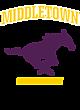 Middletown Ladies Performance Blend V-Neck T-Shirt