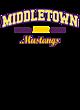 Middletown New Era Ladies Tri-Blend Hooded Sweatshirt