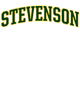 Stevenson Fan Favorite Heavyweight Hooded Unisex Sweatshirt