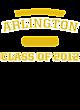 Arlington Long Sleeve Tri-Blend Wicking Raglan Tee