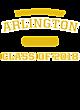 Arlington Tri Blend V-Neck T-Shirt