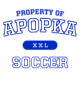 Apopka Fan Favorite Cotton T-Shirt