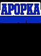 Apopka Tech Fleece Hooded Colorblock Sweatshirt