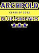 Archbold Ladies Game Long Sleeve V-Neck Tee