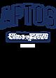 Aptos Fan Favorite Heavyweight Hooded Unisex Sweatshirt