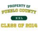 Pueblo County Holloway Electron Long Sleeve Performance Shirt