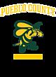 Pueblo County Womens Holloway Electrify V-Neck Long Sleeve