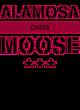 Alamosa New Era French Terry Hooded Sweatshirt