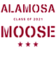 Alamosa Holloway Journey Hooded Pullover