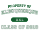 Albuquerque Classic Fit Heavy Weight T-shirt