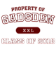 Gadsden Sport-Tek Youth Posi-UV Pro Tee