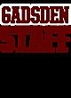 Gadsden Womens Holloway Electrify V-Neck Long Sleeve
