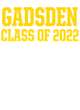 Gadsden Womens Vintage Tri-Blend Hooded Pullover