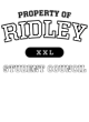 Ridley Holloway Ladies Advocate Vintage Heather Pullover