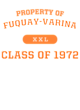 Fuquay-Varina Ladies Game Long Sleeve V-Neck Tee