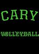 Cary Adult Baseball T-Shirt