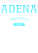 Adena Youth Heavyweight Sleeve Stripe Hooded Sweatshirt