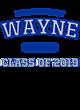 Wayne Nike Legend Tee